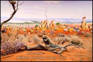 diorama mildura coach tour